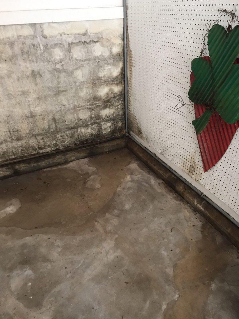 Wet Basement Oak Ridge TN